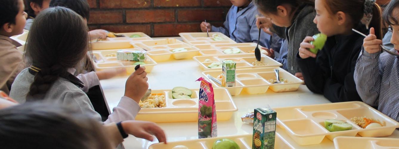 Los veterinarios velan por la seguridad y calidad de los men s escolares - Empresas de comedores escolares valencia ...