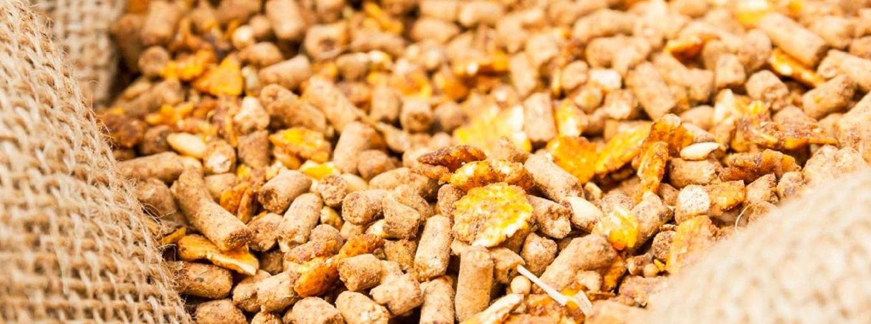 Nuevas guías europeas para renovar la autorización de aditivos en piensos