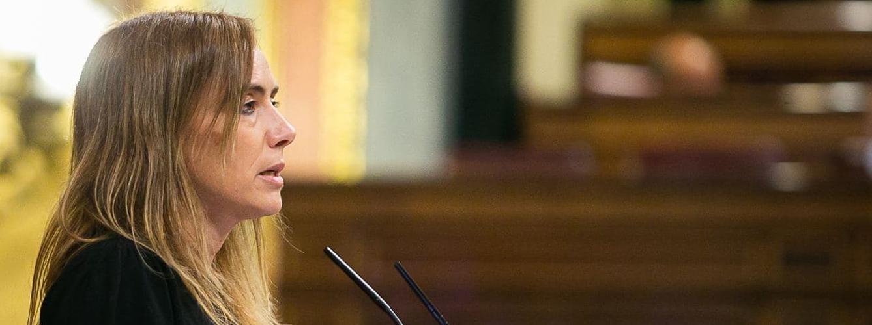 Sandra Guaita, diputada del Partido Socialista en el Congreso.